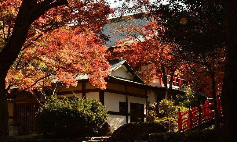 秋の山之観音